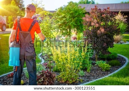 Gardener with Pests Spray. Spring Work in Garden. - stock photo