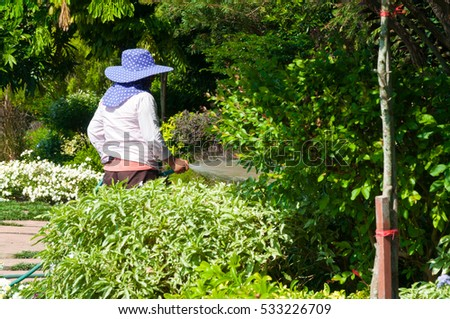gardener woman  holds the sprinkler hose for plants watering the flowers garden outdoor