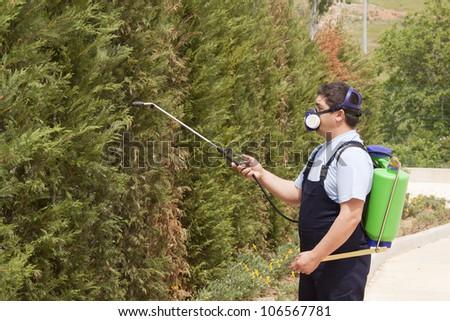 gardener working in the yard with garden spray - stock photo