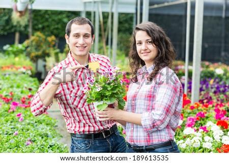 Gardeners at Nursery Showing Price - stock photo