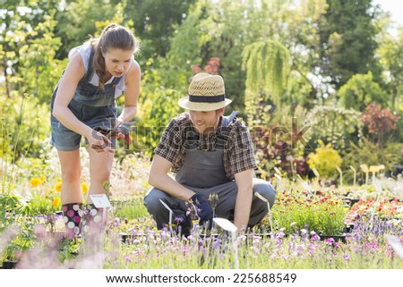 Gardeners discussing at plant nursery - stock photo