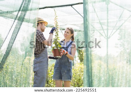 Gardeners discussing over potted plant at greenhouse - stock photo