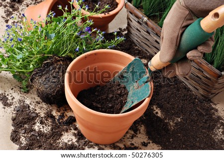 Gardeners hand in work glove with spade and dirt in clay pot.  Plants in background.  Close-up with shallow dof.  Focus on spade. - stock photo