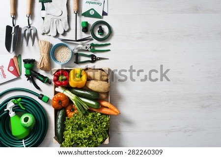 Gardening and farming tools with vegetables crate on a wooden table with blank copy space, top view - stock photo