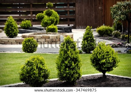 Gardening and Landscaping With Decorative Trees and Plants - stock photo