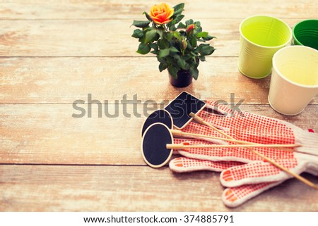 gardening and planting concept - close up of rose flower and garden tools on table at home - stock photo