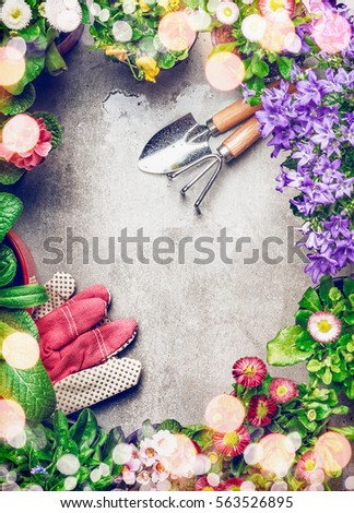 Floral Gardening Background Variety Colorful Garden Stock Photo - Colorful flower garden background