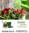 Gardening  board concept - stock photo