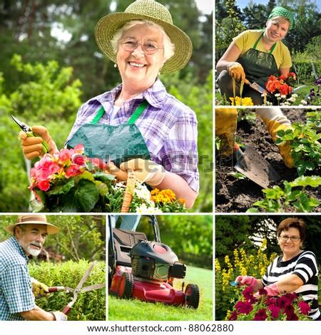 Gardening collage - stock photo