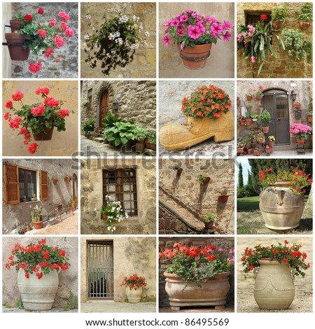 gardening collage of flowerpots on wall,  terrace, backyards and in front of the doors, Tuscany, Italy. - stock photo
