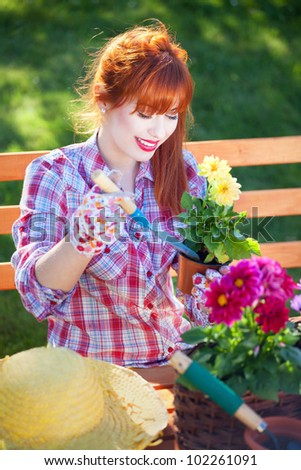 Gardening concept, potting flowers - stock photo