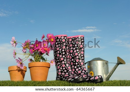 Gardening concept with flowers and wellington boots - stock photo