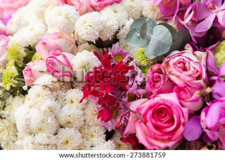 gardening, floristic, holidays and flora concept - beautiful flowers assortment - stock photo