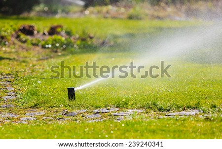 Gardening. Lawn sprinkler spraying water over green grass. Irrigation system - technique of watering in the garden.