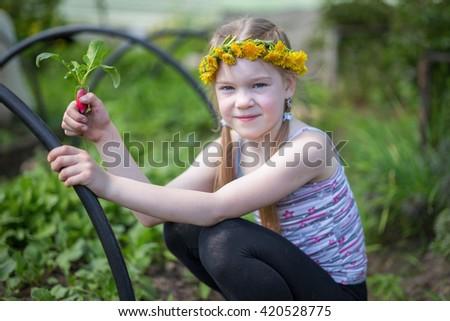 Gardening - little girl  working in vegetable garden - stock photo