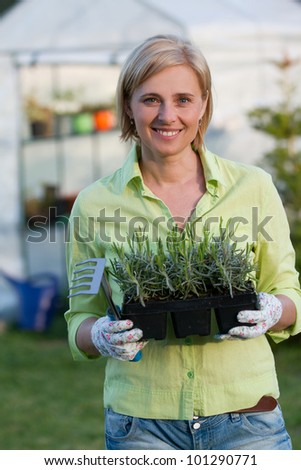 Gardening, planting concept - woman with seedlings in the garden