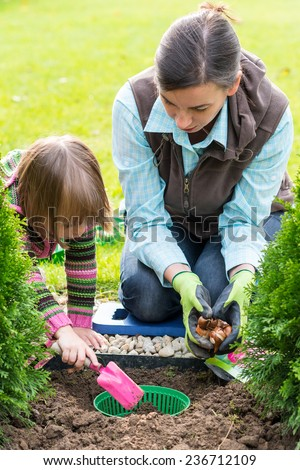 Gardening, planting, flowers bulbs - mother and daughter planting tulip bulbs - stock photo