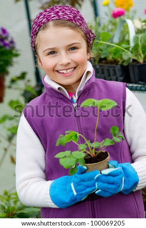 Gardening, planting -  lovely girl with strawberry seedling in the greenhouse - stock photo