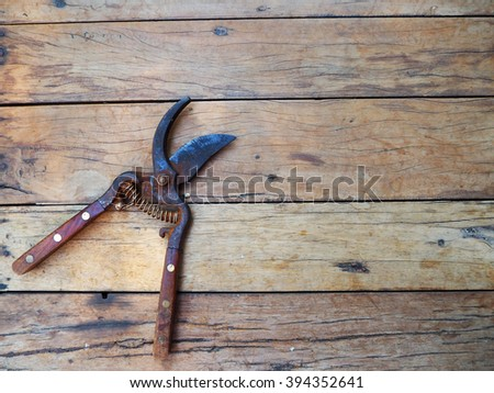 gardening secateurs for cutting branches on wood background - stock photo