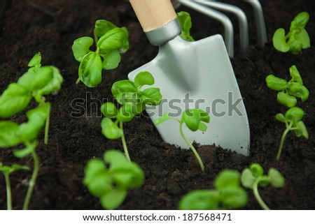 Gardening. Shovel and rake in the garden - stock photo
