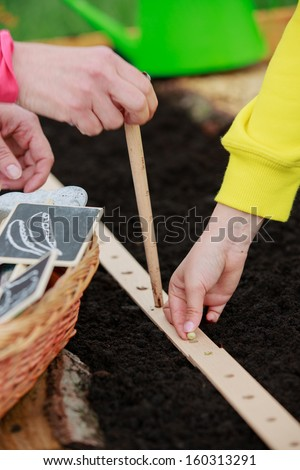Gardening, sowing seeds to the soil -  girl helping mother in the garden - stock photo