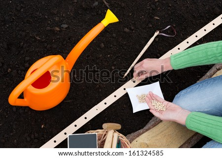Gardening, sowing - woman sowing seeds into the soil - stock photo