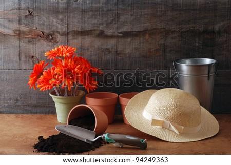 gardening still life - stock photo
