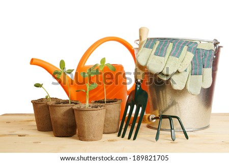 Gardening still life with young seedling over white background - stock photo
