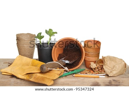 Gardening themed still life, garden tools, seedling plant, pots, compost and seeds on a wooden potting bench