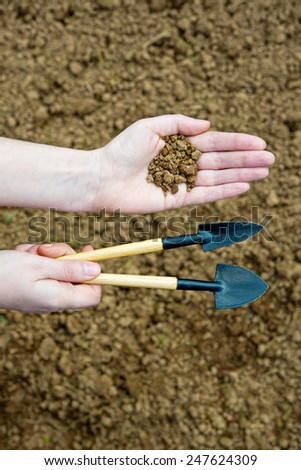Gardening tool and dirt in hands - stock photo