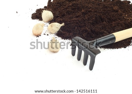 Gardening tools and flower bulbs isolated on white - stock photo