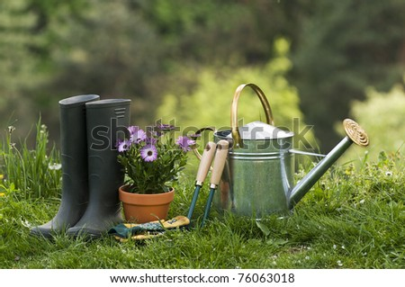 Gardening tools and flower on the grass close up - stock photo