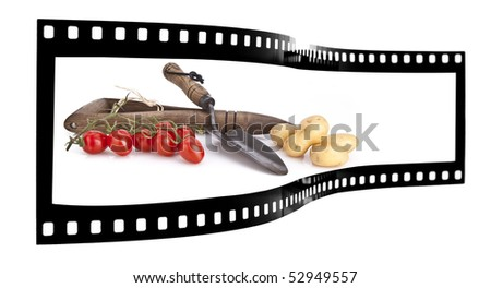 Gardening tools and fresh vegetables film strip