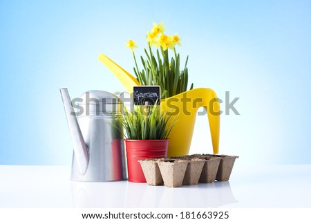 gardening tools and spring plants - stock photo
