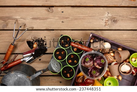 gardening tools on old wood table  - stock photo