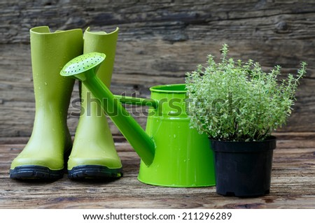 Gardening tools on old wooden planks - stock photo