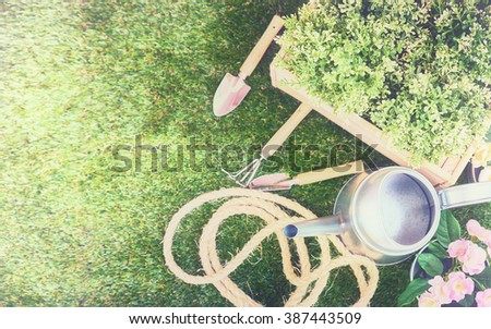 Gardening tools on the grass. Fresh flowers and plants in the spring. - stock photo