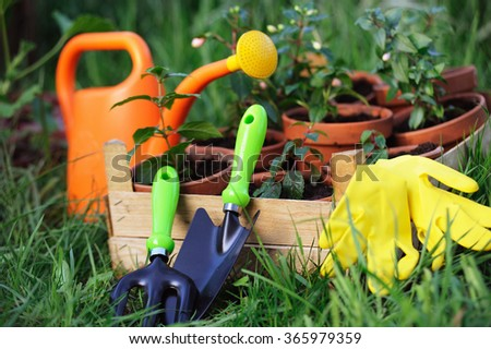 Gardening tools on the grass in the garden - stock photo