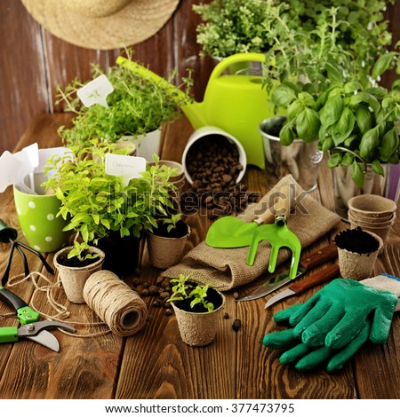 Gardening tools, watering can, seeds, plants and soil.