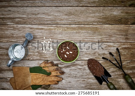 gardening tools with a pot and seeds - stock photo