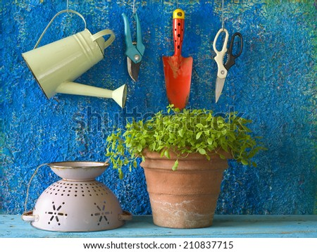 gardening tools with marjoram herbs, free copy space - stock photo