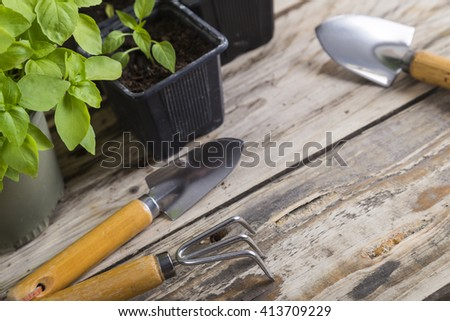 Gardening tools with plants - stock photo