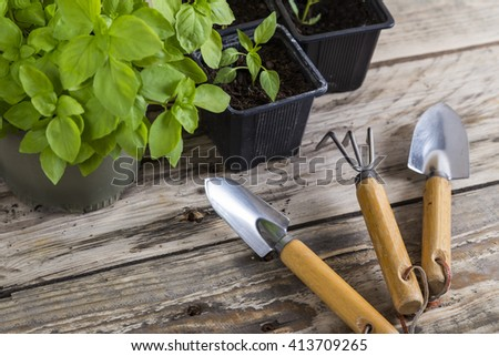 Gardening tools with plants in pots - stock photo