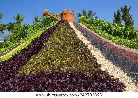 Gardening with seed - stock photo