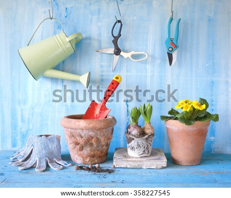gardening with spring flowers and gardening tools - stock photo