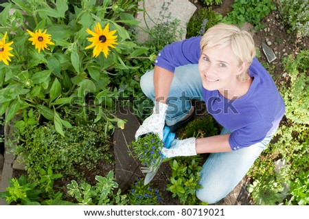 Gardening -  woman potting flowers in the  garden - stock photo