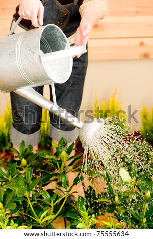 Gardening woman watering can plant spring terrace - stock photo