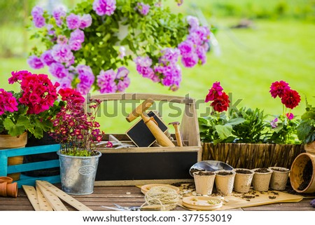 Gardening - Work in the garden, planting pots