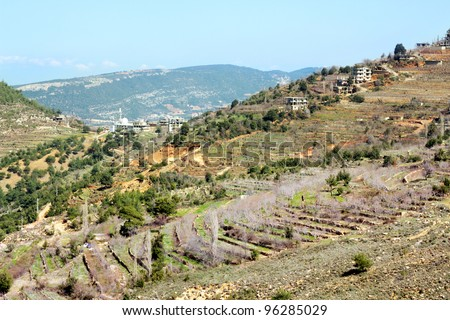 Gardens in the mountains in spring, Lebanon - stock photo