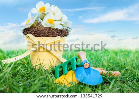 Garderi tools and flower in pot on green grass against blue sky